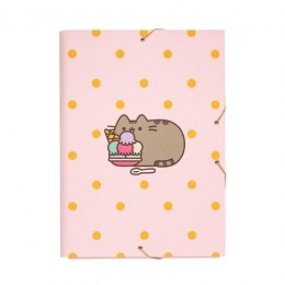 TECZKA NA DOKUMENTY PUSHEEN ROSE COLLECTION FOLDER